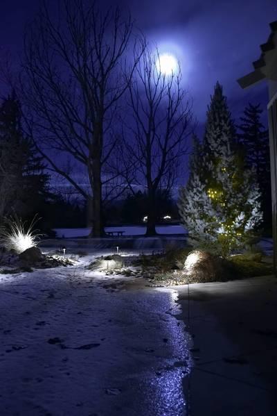 Wintersdawn